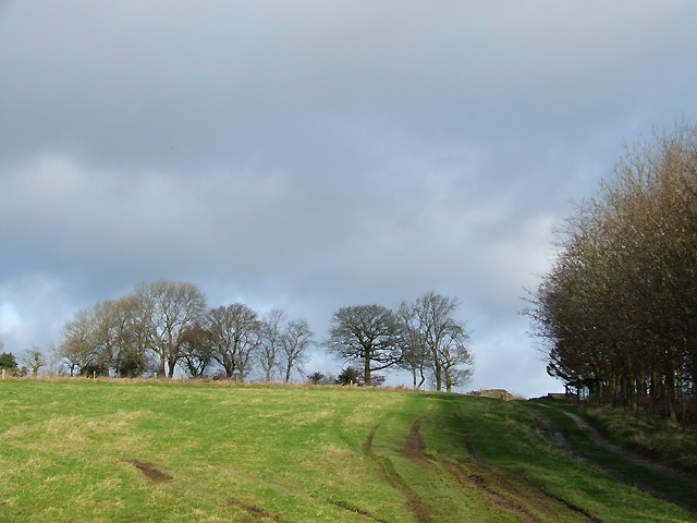 Farmland and Footpath near Shipton, Shropshire