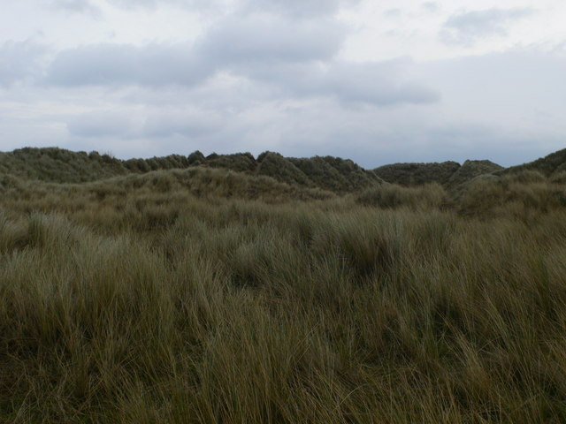 Dunes east of Gronant