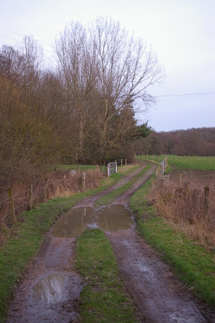 Track near Dowdes Farm
