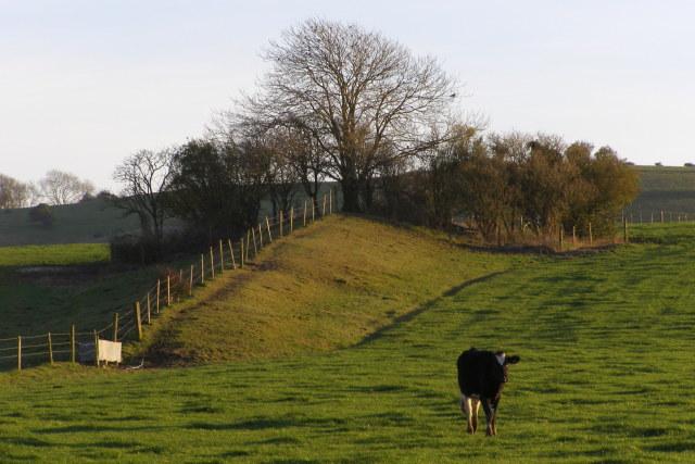Long barrow on Bokerley Down
