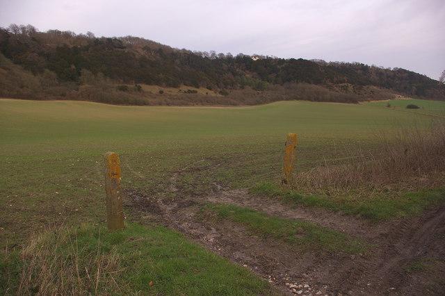 Field entrance off Buckland Lane
