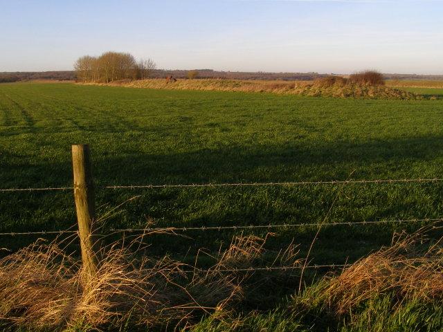 Southern end of the Pentridge bank barrow