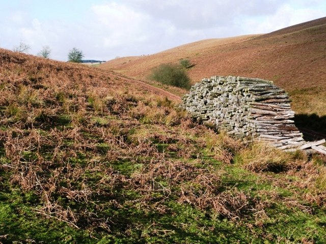Wood pile on the moorland track