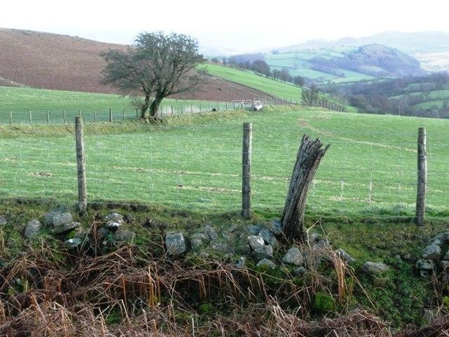 Enclosed land above Nantyroffeiriad-fawr