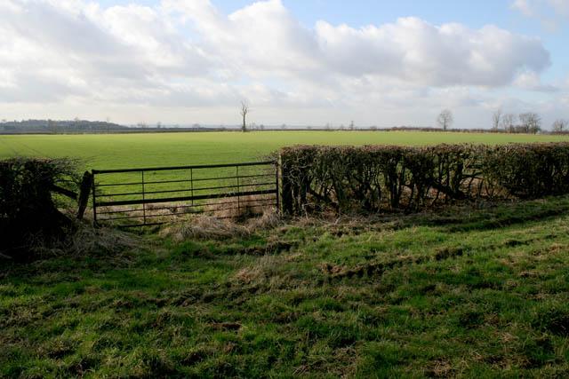 Gate near Eaton Lodge Farm