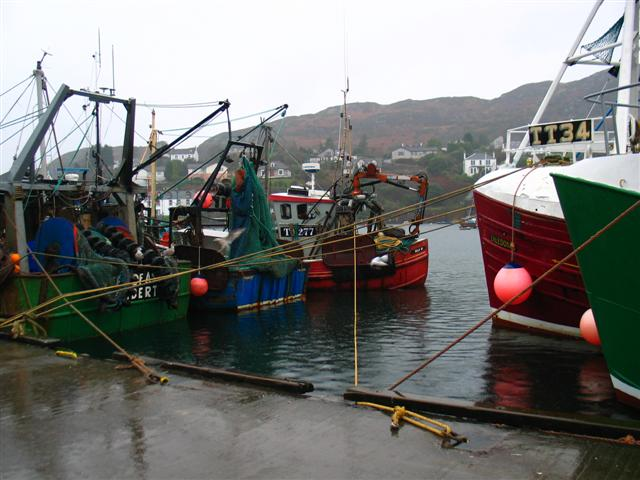 Fishing boats Tarbert Harbour