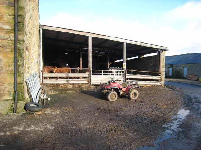 Farmyard at Latterford Farm