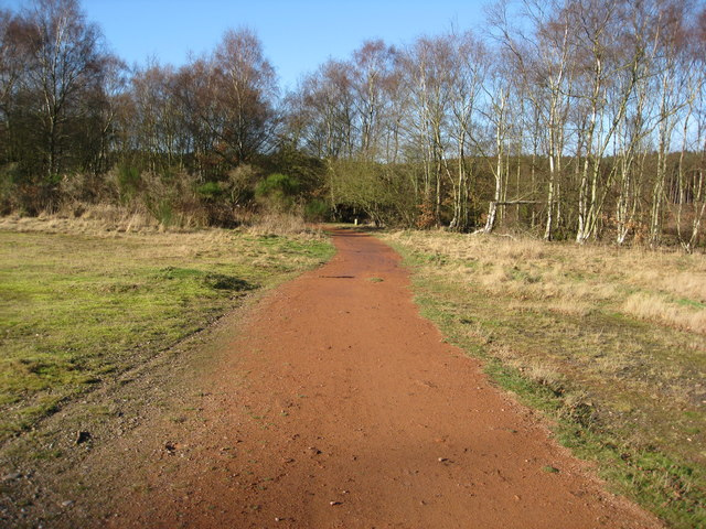 Clumber Park - Heading to point where paths meet.