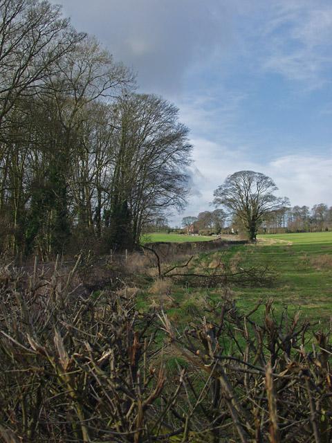 By Socken Wood, Rowley