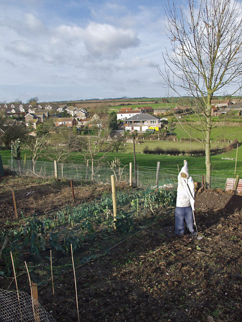 Risby Hill allotment, Little Weighton