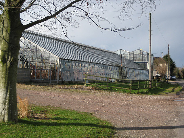 Southend Nurseries