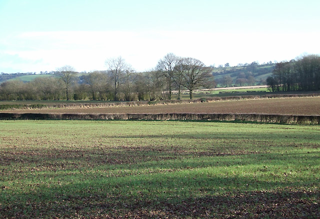 Crop Fields near Holdgate, Shropshire