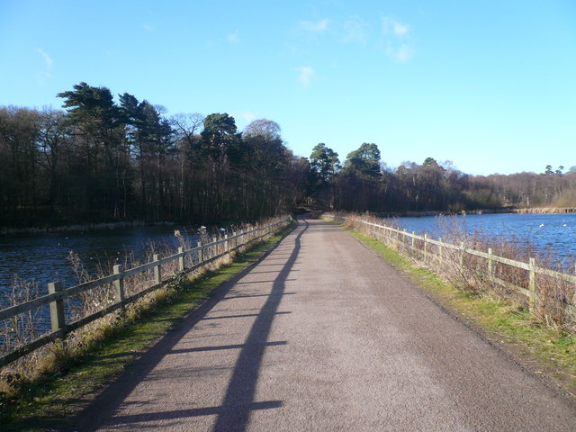 Clumber Park - Lake Crossed by Road