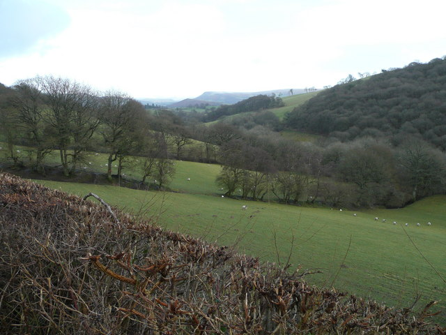 The pastures and woods of the Duhonw