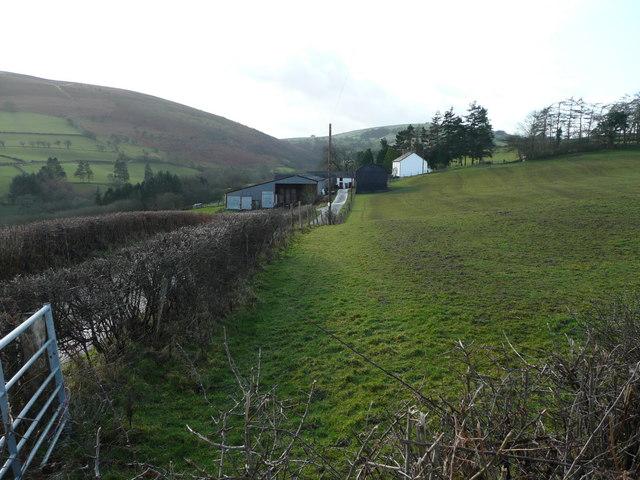 Llwyntrwsiad Farm