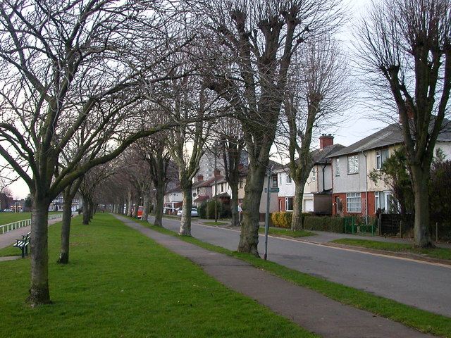 Rugby-Butlin Road