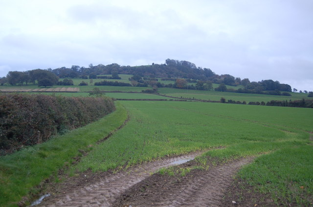 Meon Hill from Upper Quinton