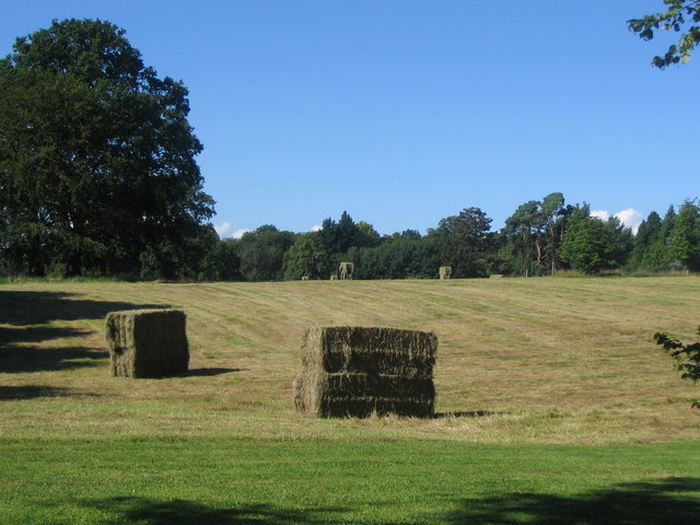 Harvest on the meadow at Wyfold Court Estate
