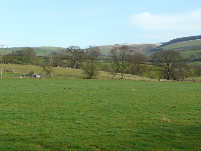 Pastures of Radnorshire