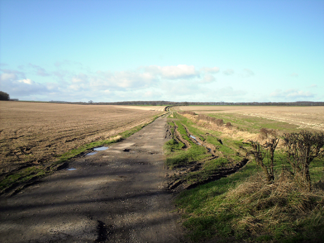 Track to Danes Graves