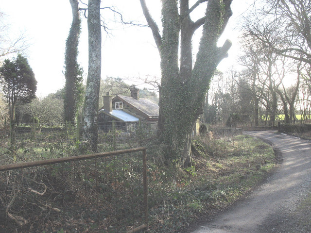 The Long Drive Lodge at Trallwyn