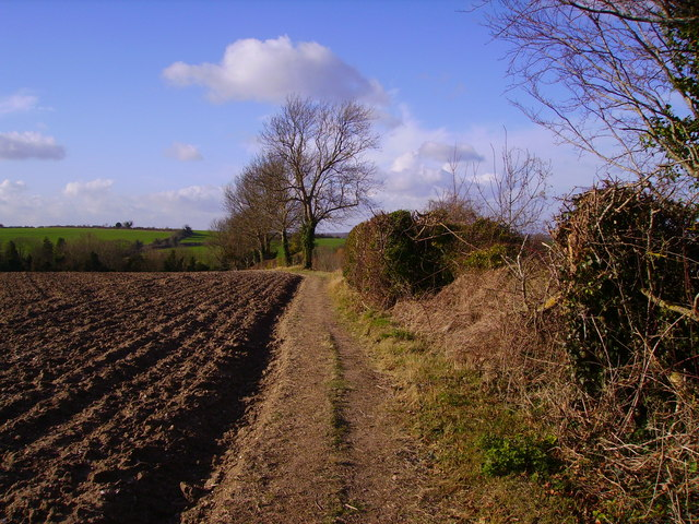 Barton Stacey - Farmland
