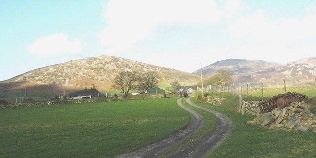 The lane up to Cae Cribyn farm
