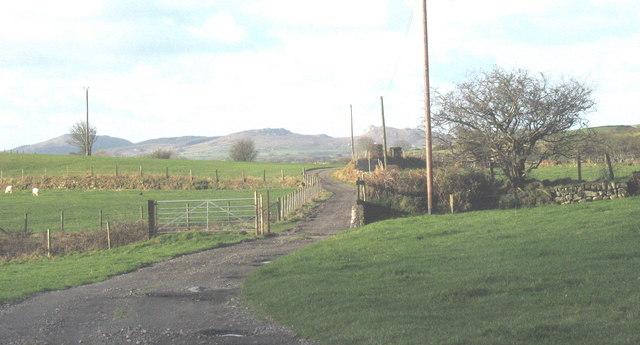 The farm road to Coed-y-garth Farm