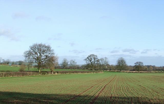 Farmland near Holdgate, Shropshire