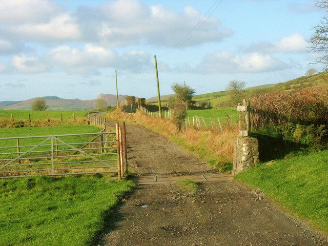 Cattle grid on the Coed-y-garth farm road