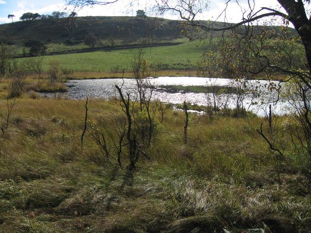Lochan, near Beith