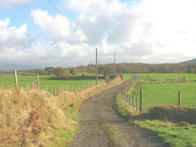 View east along the Coed-y-Garth farm road