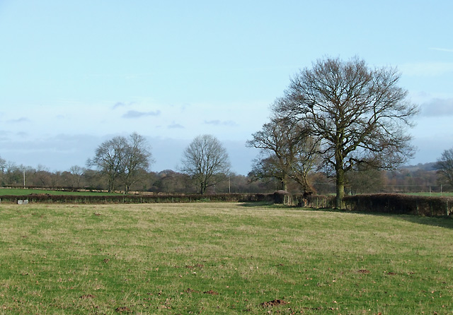 Grazing Land by Holdgate Farm, Shropshire