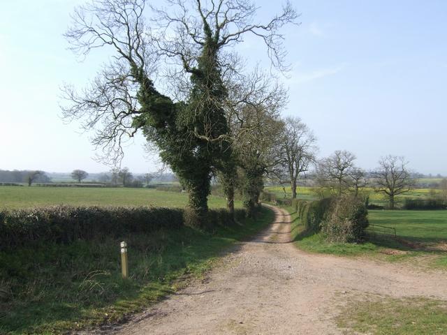 Monarch's Way towards Hubbal Grange and Tong
