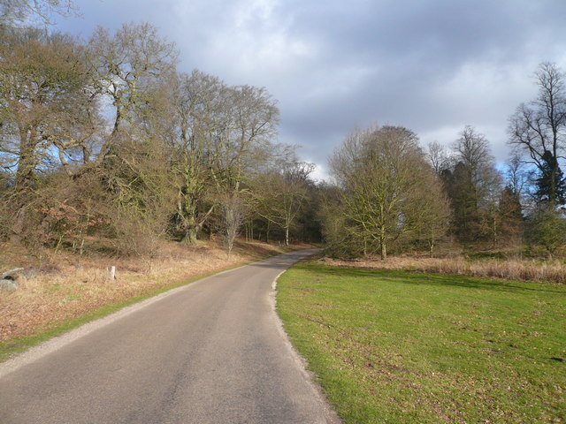 Clumber Park - Road sweeps back to Main Car Park