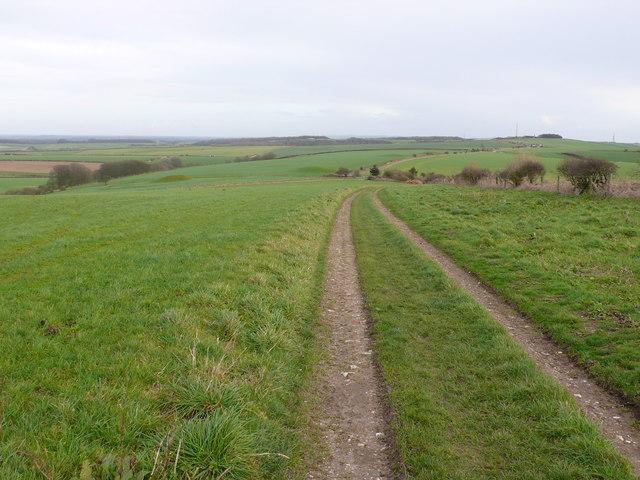 Ridgeway Path and Barrows near Upwey