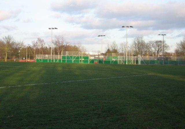 Winklebury Fields