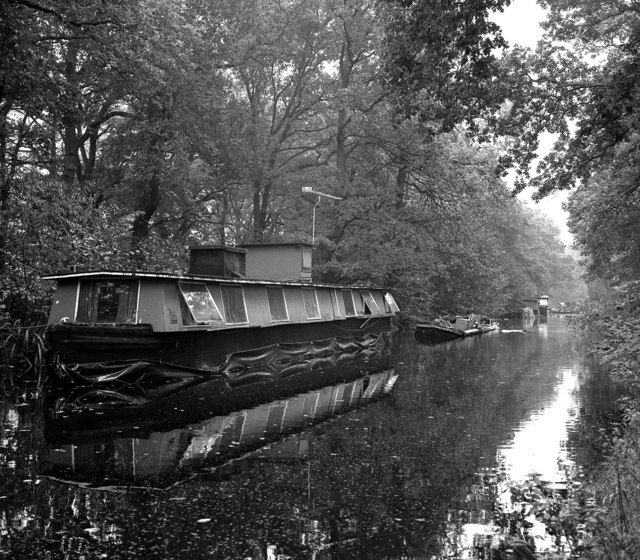 Derelict houseboats above Lock 2, Basingstoke Canal