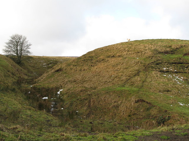 The cleugh of Elphagreen Sike