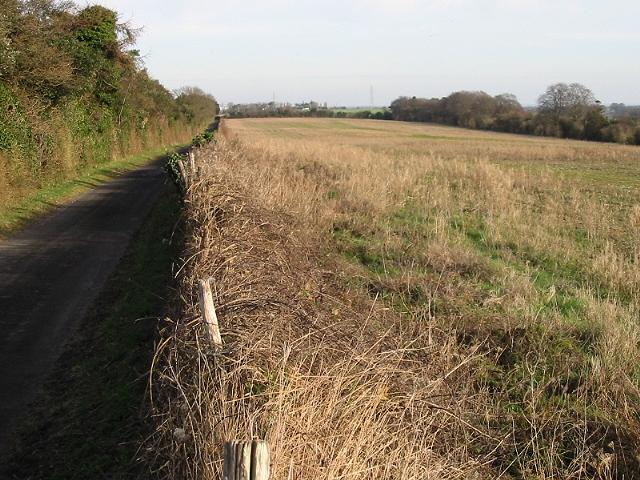 Thornton Lane and adjacent field