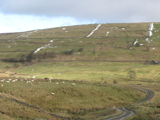 East Allendale from Elpha Green
