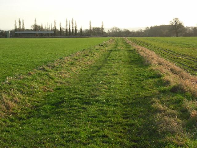 Bridleway across arable fields, South Moreton