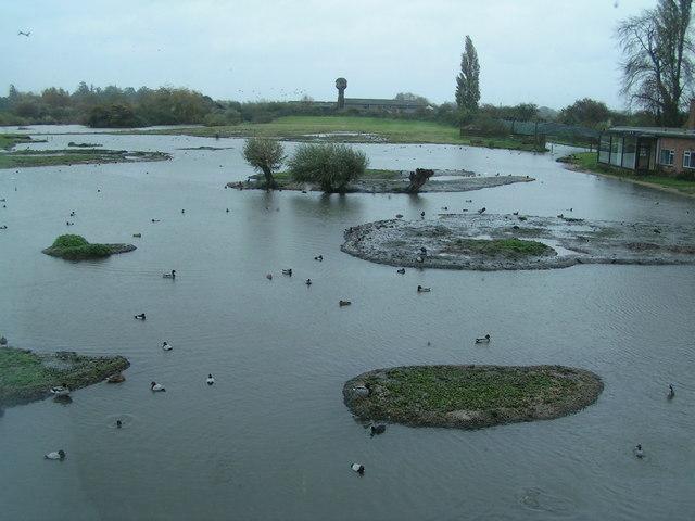 Wetlands Trust