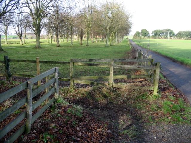 Parkland near Knowlton Court