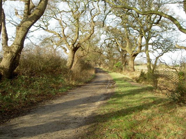 Landican Lane Bridleway