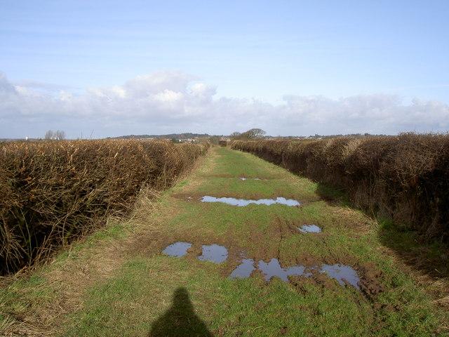 Roman Road Bridleway