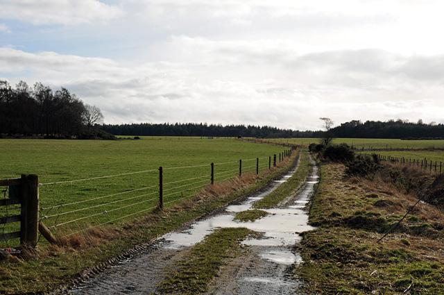Farm Track near Baldarroch Farm