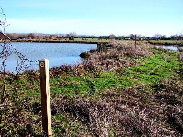 Ponds beside the Saxon Shore Way