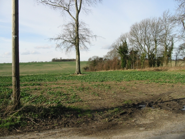 Farmland viewed from Pike Road