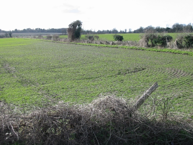 View SW across the fields towards Barfrestone